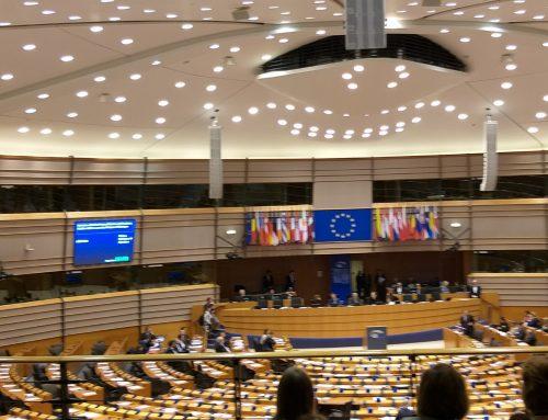 MEP 2019-20 – ATTIVITA' E TEMI